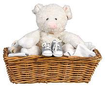 豚Stuffieとシューズ