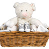 Pig stuffie et chaussures
