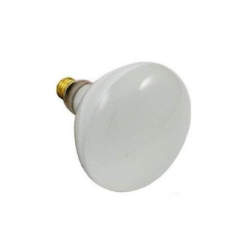300 Watt Swimming Pool Flood Light Bulb