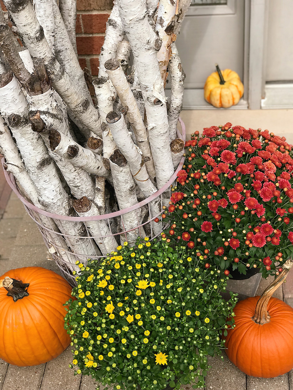 arrangement of mums and pumpkins and birch branches