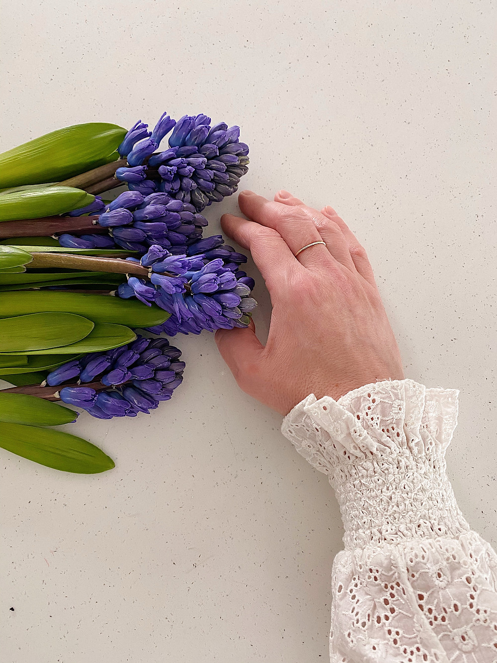 hyacinths and a hand