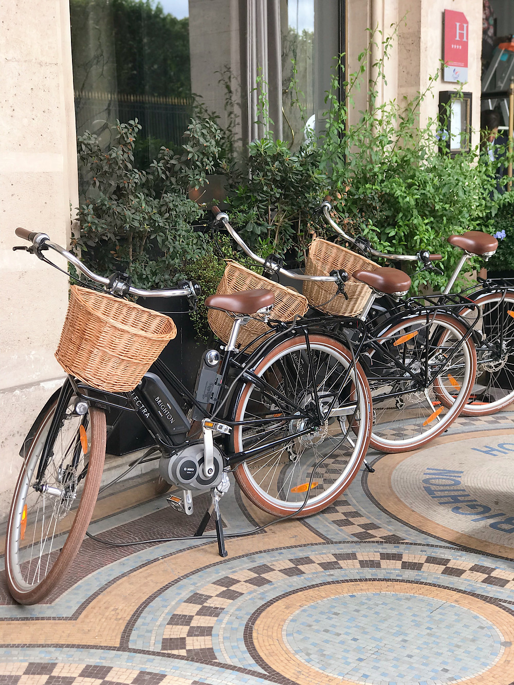 bicycles lined up in front of building