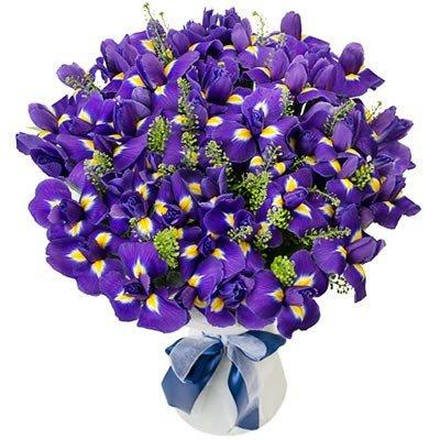 Цветы ирисы в букете Журавль