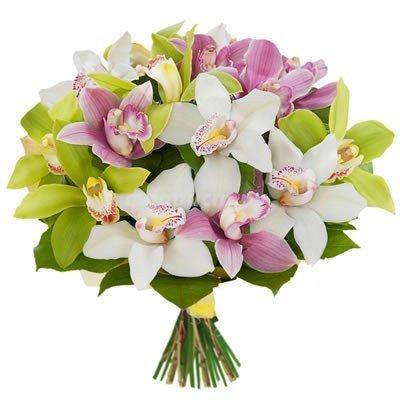 Букет из 15 орхидей Ланселот