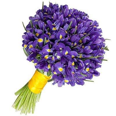 Фиолетовый букет ирисов 101 Гарри