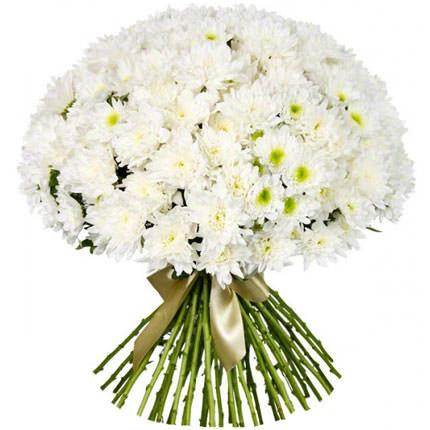 """Букет белых хризантем 51 шт. """"Белоснежный тысячелистник"""""""