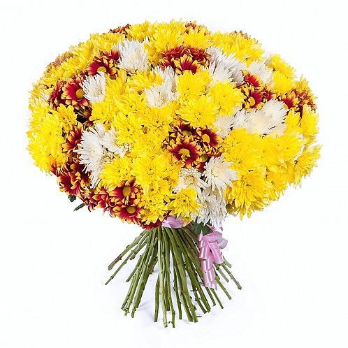 Букет кустовой хризантемы 51 шт.