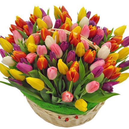 """Корзина разноцветных тюльпанов 101 шт. """"Наши люди"""""""