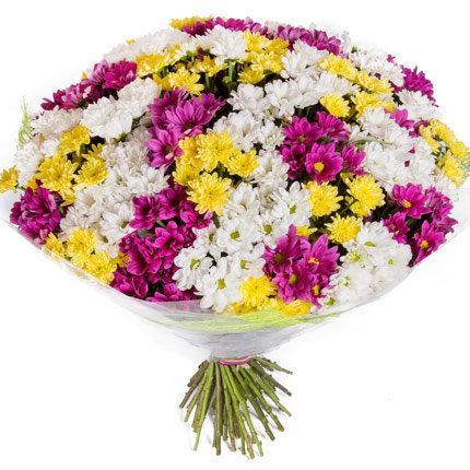 Букет разноцветных хризантем 51 шт.