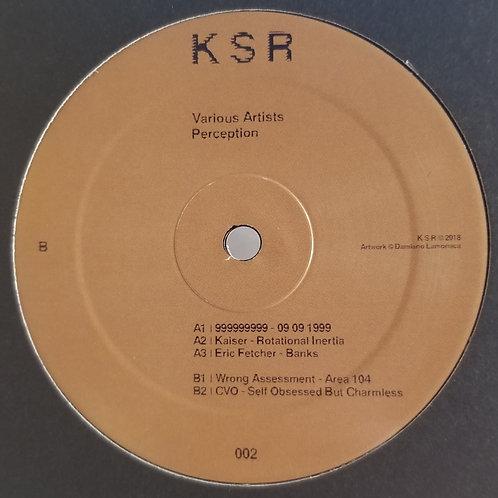 "Various Artists ""Perception"""