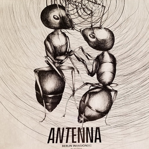 "Various Artists ""Antenna"""
