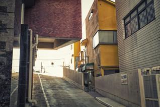 tokyo project_a-55-Edit.jpg