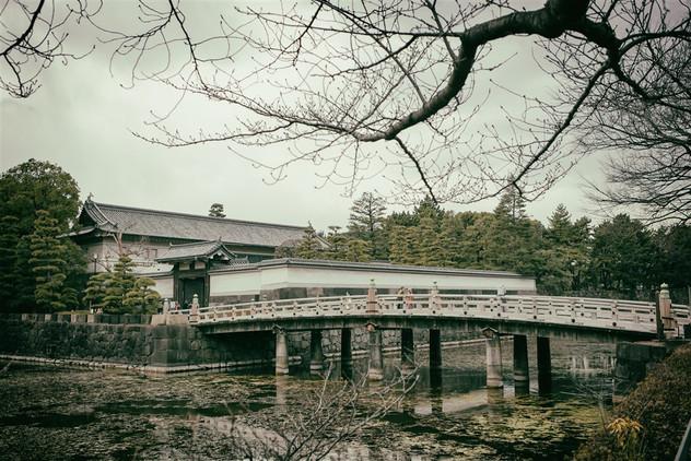 tokyo project_a-285-Edit.jpg