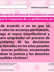 Consulta popular en México: ¿Fracaso de la 4T? ¿Herramienta ciudadana? ¿Arma política?
