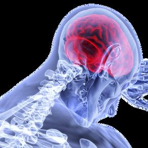 ¿Cómo se construye la imagen en el cerebro del elector?