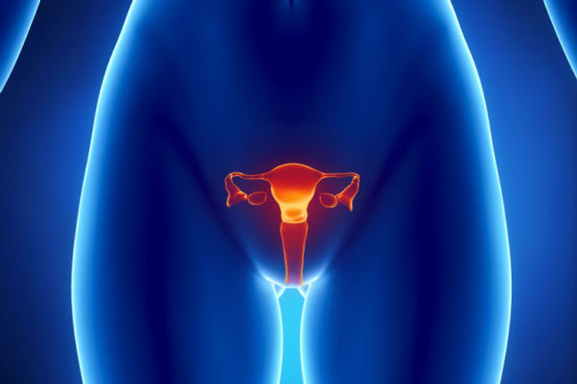 hystectomy photo.jpg