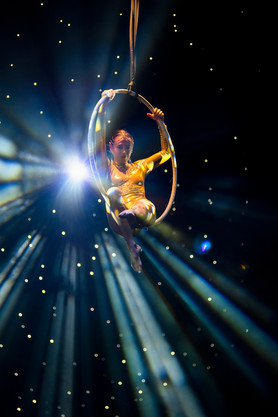 Trapese artist in ring