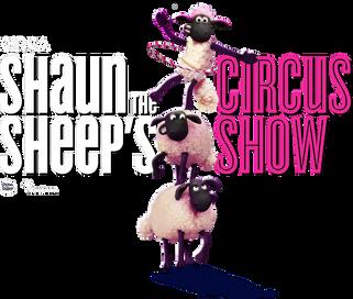 International circus collaboration to premiere in Brisbane