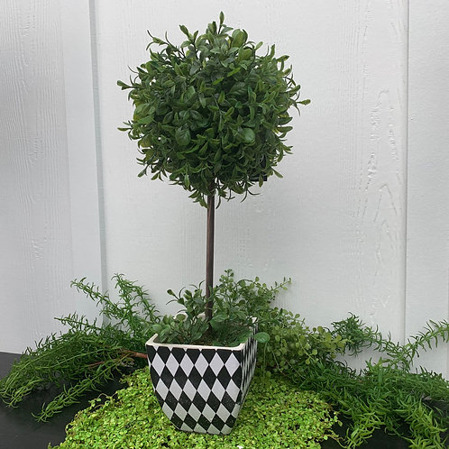 Large Harlequin Topiary