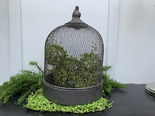 Large Wire Mesh Cloche