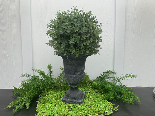 Topiary in Gray Urn
