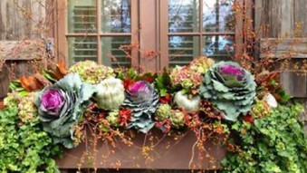 I just Love a Gorgeous Autumn Window Box