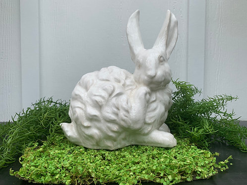 White Bunny Scratching