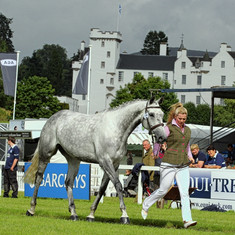 Tinker trot up at Blair Castle