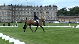 Dressage in front of Hopetoun House
