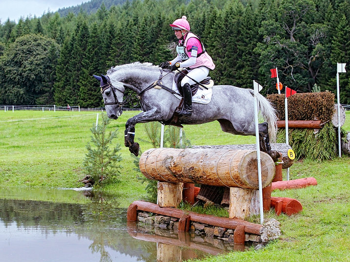 Grey horse jumping large log into water