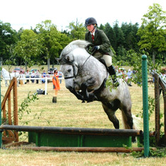 Ted at the Breed Show Jumping fence