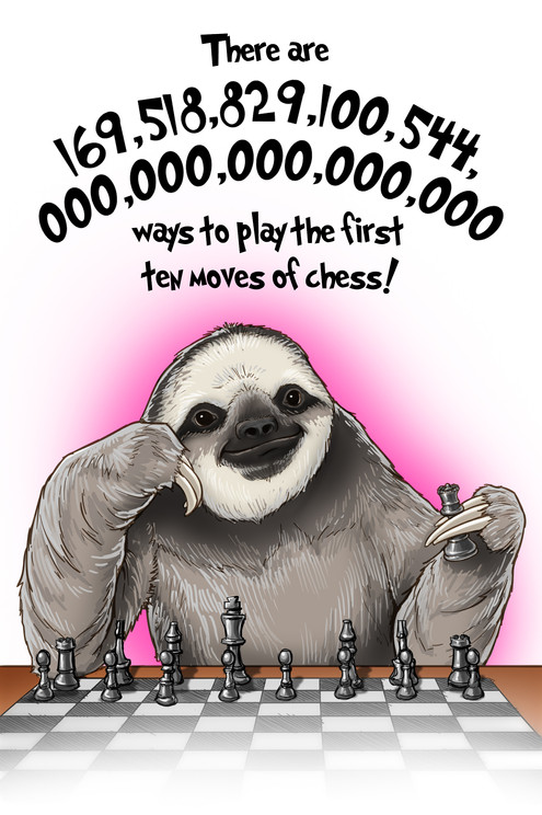 Sloth Fun Facts