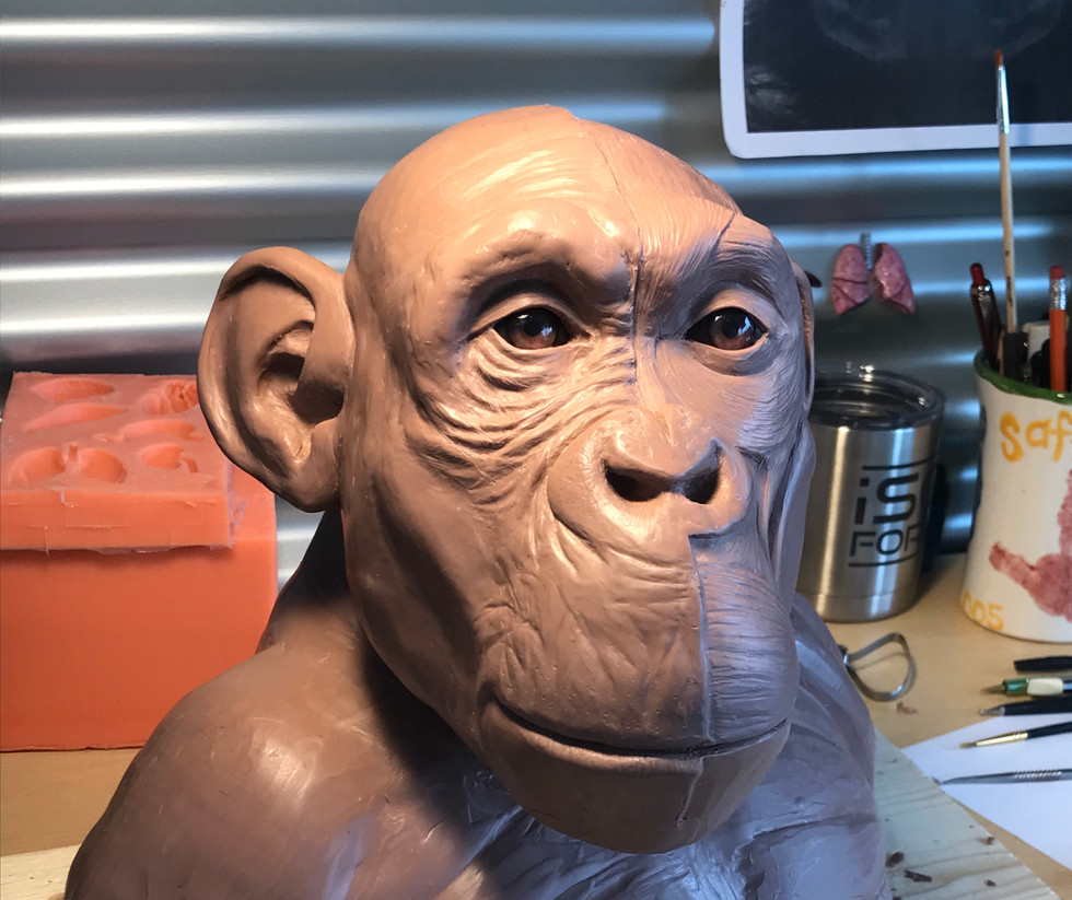 Bonobo In-Progress