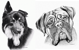 Dog Drawings for Auction.png