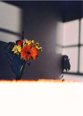 Sunlight by Oscar Vinter