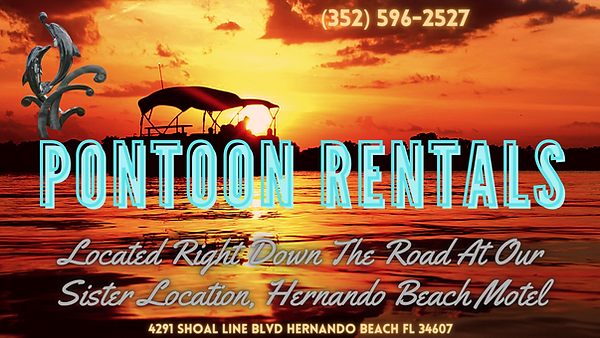 Silver Dolphin Pontoon Rental Banner.png