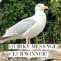Announcing The Quirky Message Club's July Winner!