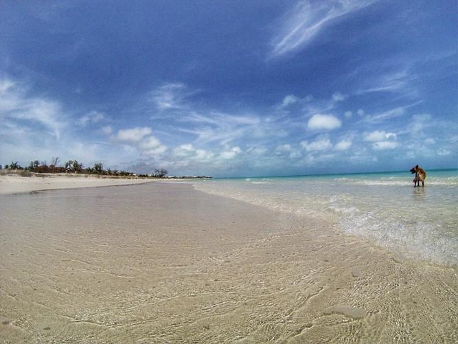 After Irma Sept 9 Bight Beach.jpg