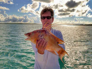 Captain Dave Hogfish Bahamas Sailing Catamaran Charters