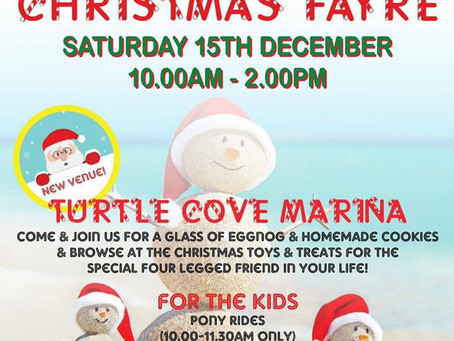 Christmas Fayre: December 15, 2018