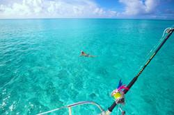 Swimming Clear Turquoise Bahamas Sea