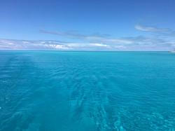 Bahamas Turquoise sea Calvert Catamaran