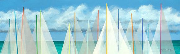 Sails #170