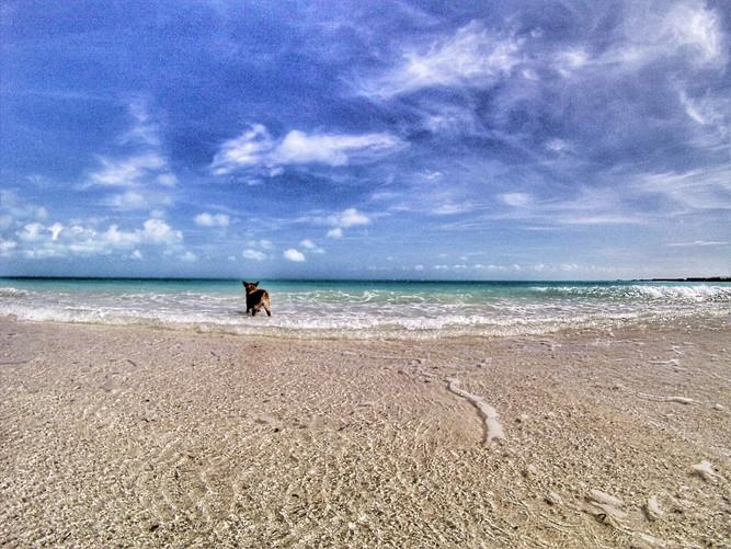 After Irma Sept 9 - Skiff on Bight beach