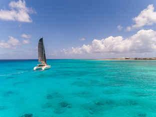 Sailing Catamaran Carbon Calvert Sails