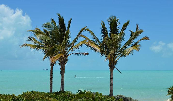 Palm Trees Turquoise Ocean kiteboarding Shipwreck turks caicos