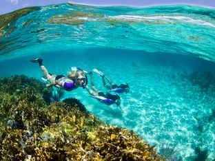 Photo by Stephen Frink Reef Snorkeling.j