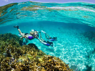 Photo by Stephen Frink Reef Snorkeling.j