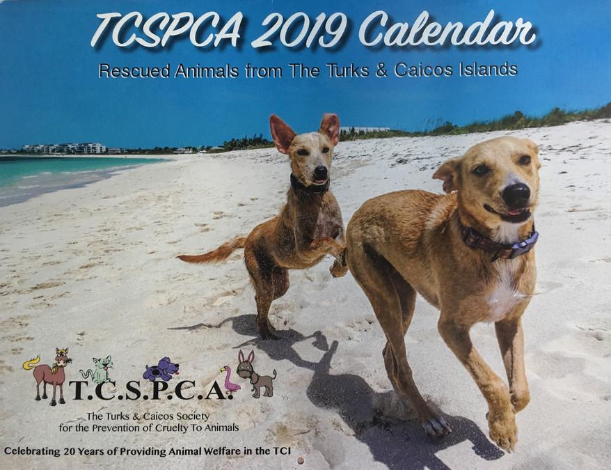 2019 TCSPCA Calendar