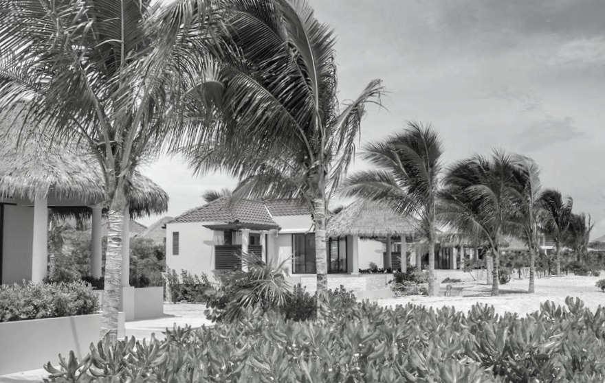 Swaying Palms Beachfront bungalows